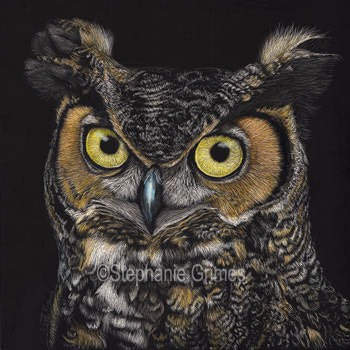 GreatHornedOwl-web