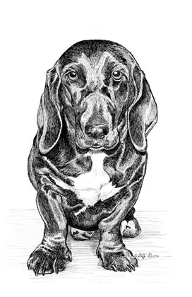 jubilee-basset-mix-ink