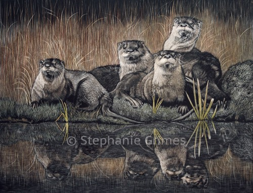 OtterFamily-web