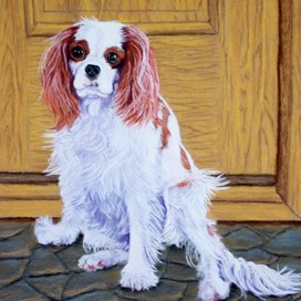 pleasedontgo-dog-pastel